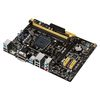 ASUS AM1M-A, PCI-Ex16, 2xDDR3, SATA3, VGA/DVI/HDMI/USB3.0, mATX (Socket AM1)